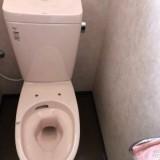 トイレ交換工事 愛知県知多郡南知多町 BC-ZA10S-DT-ZA180E-LR8