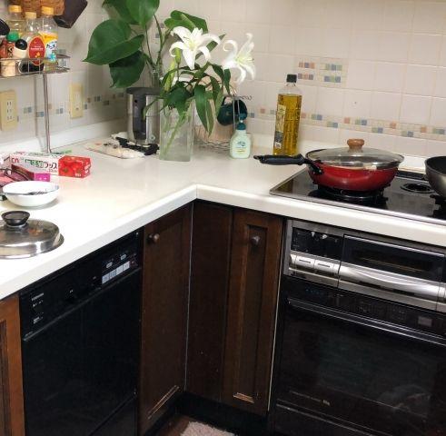 ビルトイン食洗機 オーブン交換工事 神奈川県中郡大磯町 RSR-S14E-13A-B